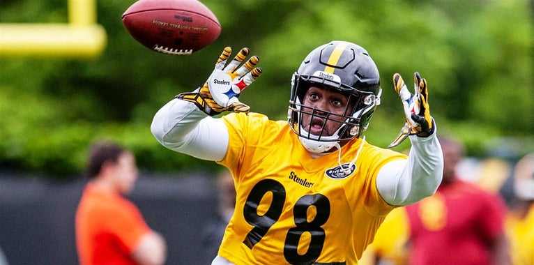 Steelers Notebook, Holiday Edition