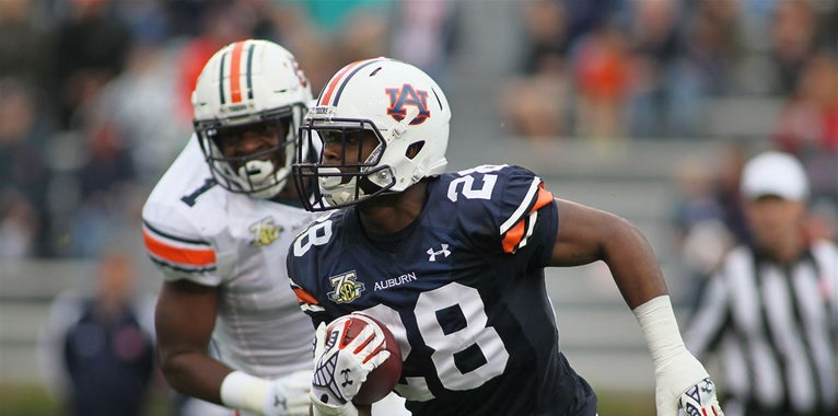 Photos: Scenes from Auburn's A-Day scrimmage
