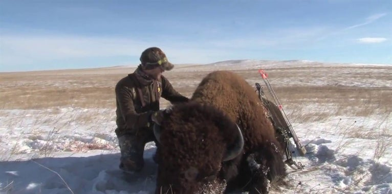 Video: Bowhunt for Giant Buffalo